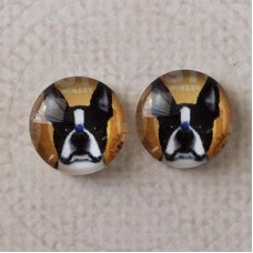 12mm Art Glass Backed Cabochons -  French Bulldog